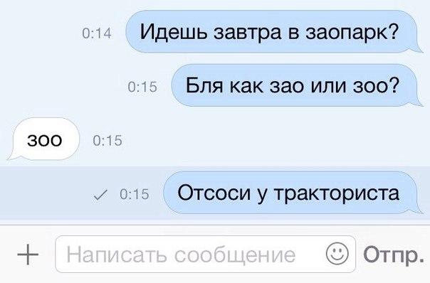 скажи приколы: