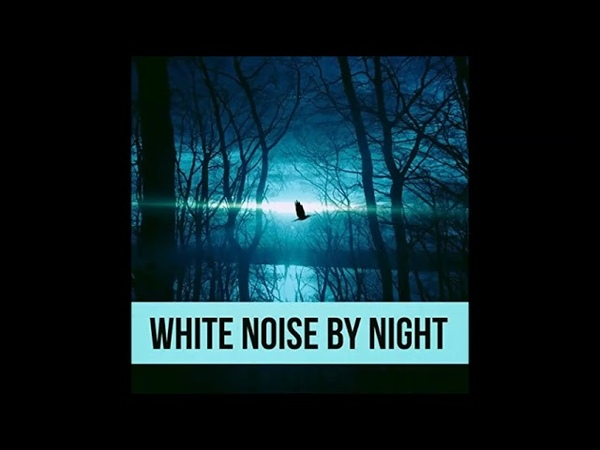 WHITE NOISE BY NIGHT DJ Buffie