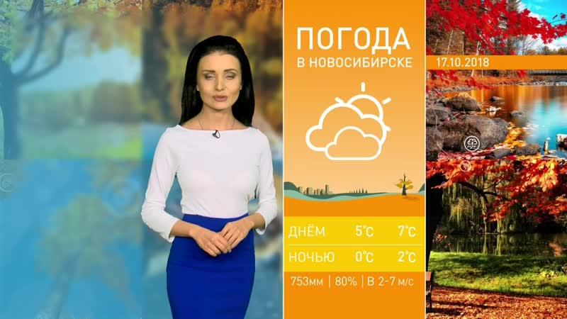 Уход на профилактику (ОТС HD [г. Новосибирск], 17.10.2018)