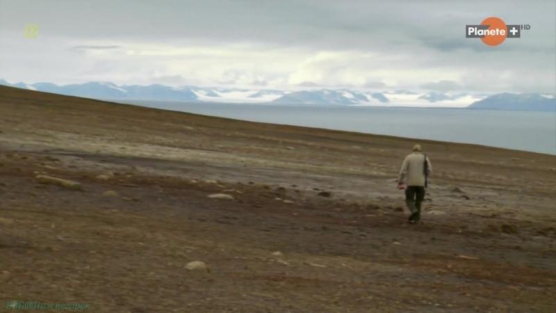 «Гибель морского монстра» (Научно-популярный, исследования, палеонтология, 2010)