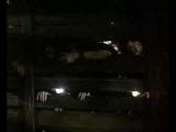 Люди под лестницей (The People Under the Stairs) 1991 Трейлер