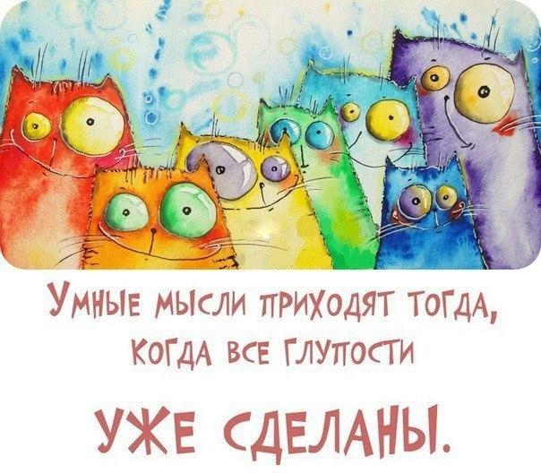 http://cs543101.vk.me/v543101386/1102f/_YhGpfMHdBs.jpg