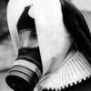 Black Swan.©