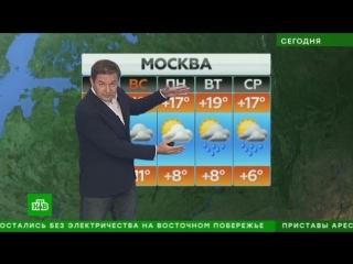 Прогноз погоды на 15 сентября