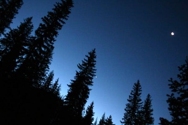 темная ночь только пули по степи свистят: