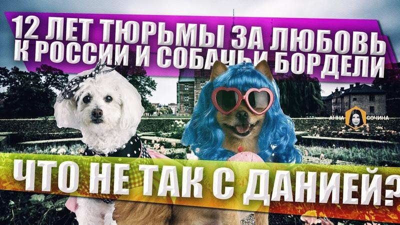 12 лет за пророссийские взгляды. При чем тут собачьи бордели, и что не так с Данией? (Анна Сочина)