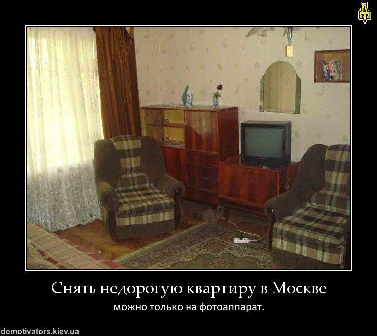 Отошел сторону где в россии самые злые комары повторила Дайна