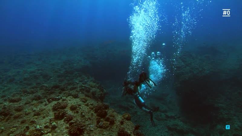 Inmersión letal 2 (2009) Into the Blue 2 The Reef sexy escene 05 01 Laura Vandervoort