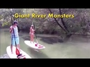 Giant River Monsters Most Scariest Video Ever - Awesome Things