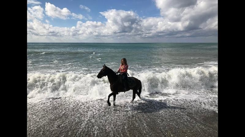 Конный маршрут к Черному морю