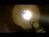 Пожарные спасли котёнка с того света после пожара