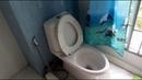 Мою туалеты/Катаюсь по городу на Bentley(почти)/Новый друг с Афганистана