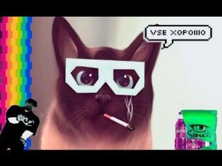 ТНТ4 смотреть онлайн ... - RuTor.TV