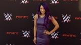 SB_Group Sasha Banks WWE's First-Ever Emmy FYC Event Red Carpet