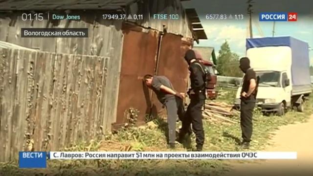 Новости на Россия 24 • Лесорубы из Вологодской области отправляли деньги боевикам ИГ в Сирии