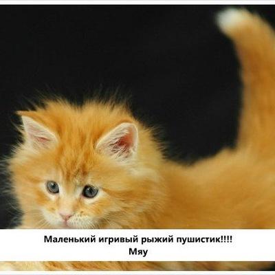 Вика-И-Настя Подружки, 10 февраля 1999, Москва, id228046434