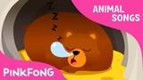 Hibernation Song Animal Songs PINKFONG Songs for Children