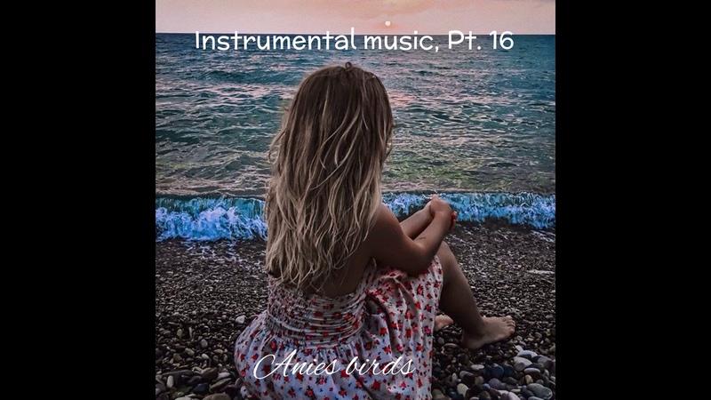 Anies birds. сборник instrumental music pt. 16