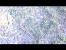 [DontWorry ] ШКОЛЬНИКИ ЗА РУЛЁМ МАШИНЫ | ЛОМАЮТ МАШИНУ - ЭТО МОЙ АВТО! ПРАНК - ПРОВЕРКА ЛЮДЕЙ