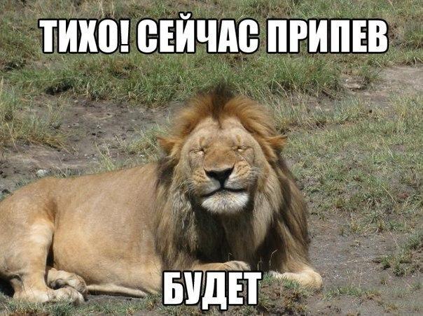 http://cs322820.vk.me/v322820059/3021/DTNEMAfDC3Y.jpg