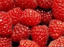 """Предпросмотр схемы вышивки  """"малина """". малина, кухня, ягоды, малина, серия, предпросмотр."""