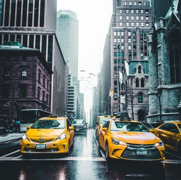 Один из таксистов Нью-Йорка написал у себя на странице в соцсети: Я приехал по адресу и посигналил. Прождав несколько минут, я просигналил снова. Так как это должен был быть мой последний рейс,