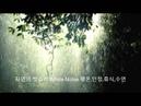 자연의 빗소리 White Noise 평온,안정,휴식,수면 (120분)