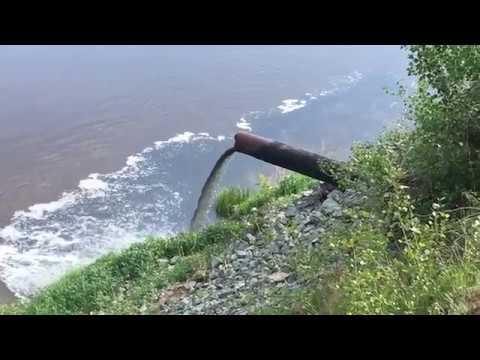 В Богатом Самарской области загрязняют водоемы