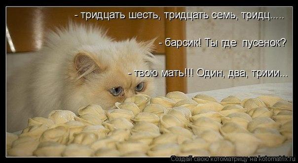 http://cs315316.vk.me/v315316060/66d9/84UlDzkkN3c.jpg