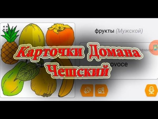 Чешский Язык, карточки Домана на Чешском 2