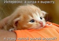 Пожыратель-Колбасы Колбасажор, 8 августа 1996, Саки, id167504657
