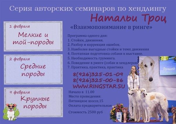 Серия семинаров по хендлингу Натальи Троц! LUvz0BfCQIA