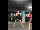 Тяжеловес Стивен Маури готовится к дебюту в Bellator MMA