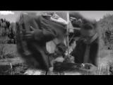Yu-Vizbor-i-O-Mityaev-A-ya-edu-za-tumanom-720p