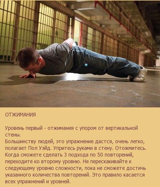 Фото №431214109 со страницы Nurislam Katipov