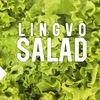 Lingvo Salad | Разговорный клуб