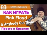 Pink Floyd - Is Anybody Out There Разбор - Просто и красиво