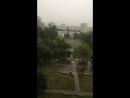 Дожди не хилый