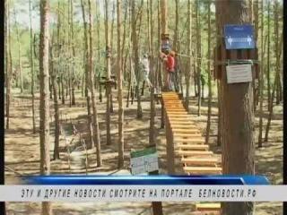 В Белгороде может появиться молодёжный парламент