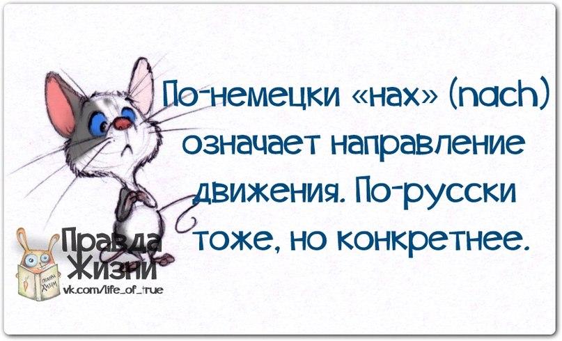 http://cs413918.vk.me/v413918123/c888/UQ6jXnDYVBs.jpg