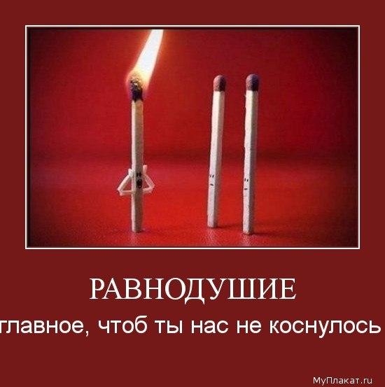 http://cs616320.vk.me/v616320448/13e4a/ggzOQ_DmV0s.jpg