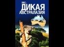 Фильм BBC Дикая Австралазия Wild Australasia Серия 5 смотреть легально и бесплатно онлайн на