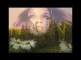Ольга Сердцева - Прости меня мама