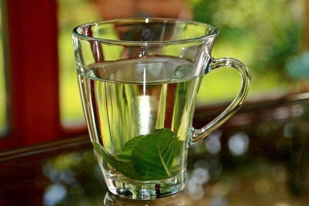 5 успокаивающих чаев