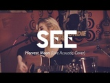 Car Astor - Harvest Moon (Neil Young) Live Acoustic Cover