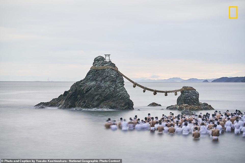 Фотоконкурс National Geographic 2018