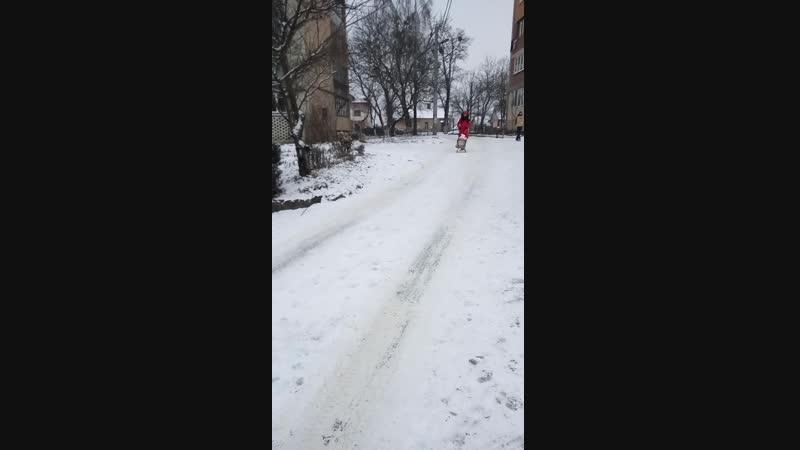 1грудня 2018року,перший сніг,перші емоції Моніки!
