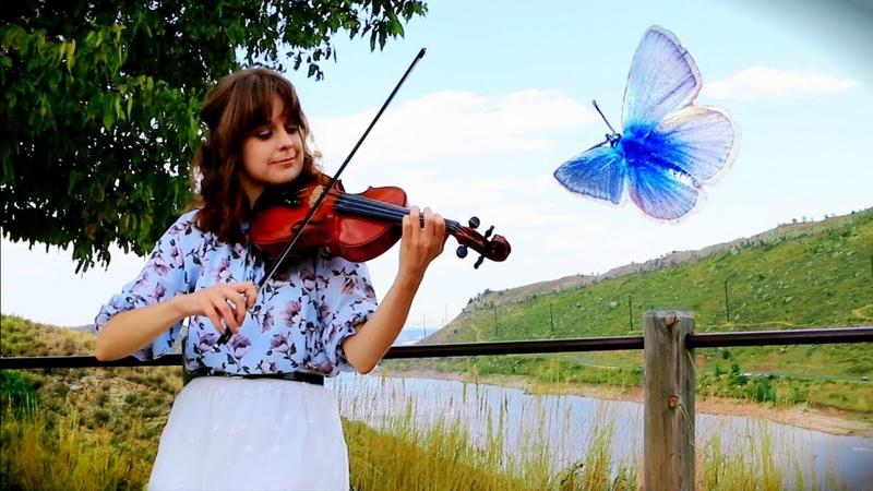 Butterfly Kid on the Mountain ~ Irish Fiddle Tunes Katy Adelson