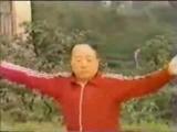 Линь Могэн 林墨根 представитель пятого поколения янши тайцзицюань демонстрирует тайцзицюань линии Ян Чэнфу