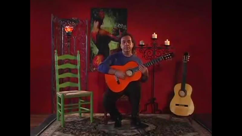 Hoa Tau Guitar Flamenco Armik